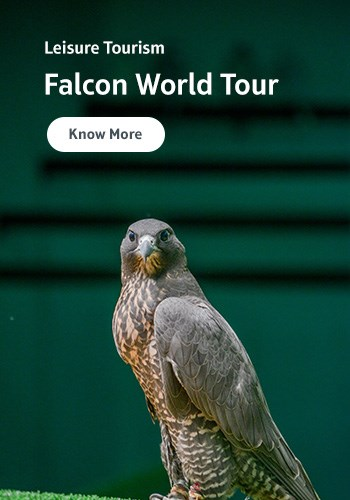 Leisure Tourism – Falcon World Tour