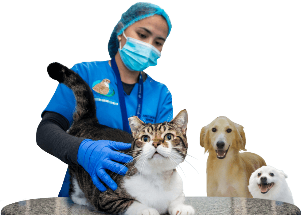 Pet Care Center